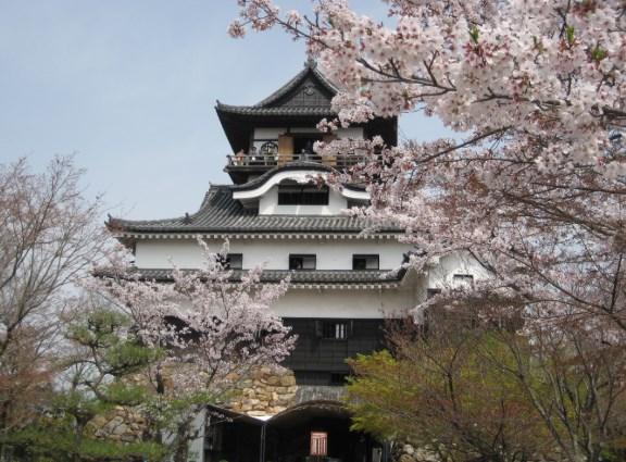 犬山城,花見,見頃,場所取り,駐車場,トイレ,屋台,営業時間