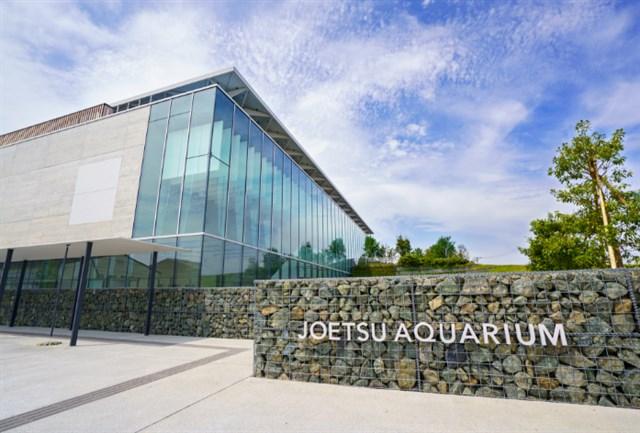 上越市立水族博物館 うみがたり,混雑状況,夏休み,盆休み,アクセス,駐車場