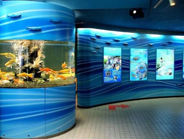 さいたま水族館,混雑状況,夏休み,盆休み,アクセス,駐車場