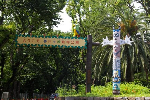 川崎市夢見ヶ崎動物公園,混雑状況,夏休み,盆休み,アクセス,駐車場