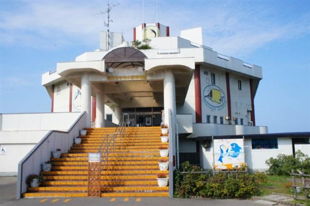 寺泊水族博物館,混雑状況,夏休み,盆休み,アクセス,駐車場