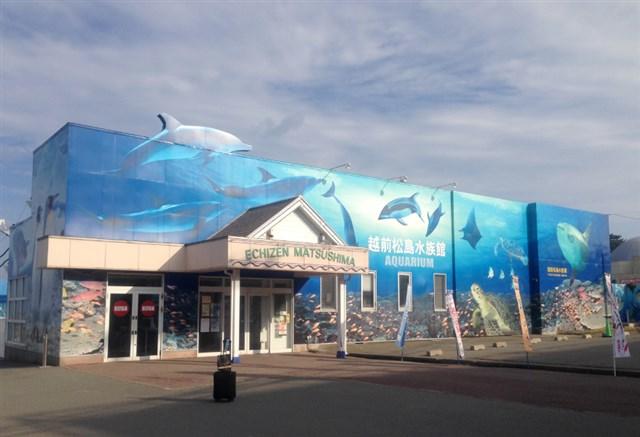 越前松島水族館,混雑状況,夏休み,盆休み,アクセス,駐車場