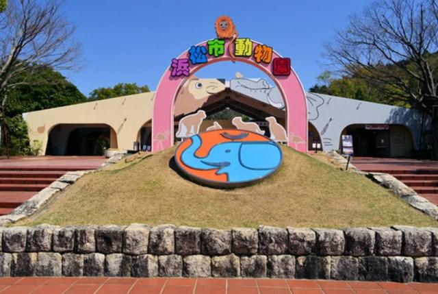 浜松市動物園(はまZOO),混雑状況,夏休み,盆休み,アクセス,駐車場