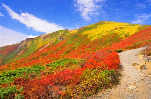栗駒山,紅葉,名所,見頃,見ごろ,時期,人気,ランキング,駐車場,混雑